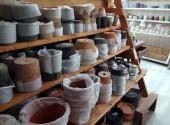 陶器鉢 モスポット